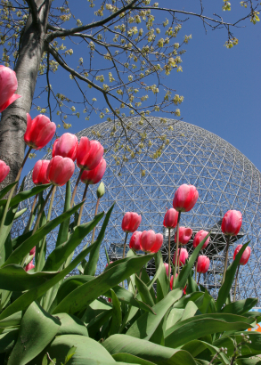 A photo of the Biosphere in Montreal